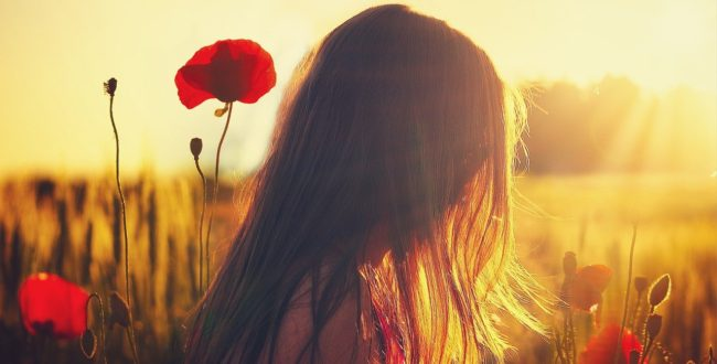Woman Poppies Sunlight Girl  - enriquelopezgarre / Pixabay